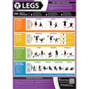 PosterFit Legs Exercise Poster