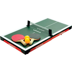 Butterfly Mini Indoor Table Tennis Table