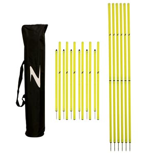 Ziland Two Piece Slalom Poles 12 Pack