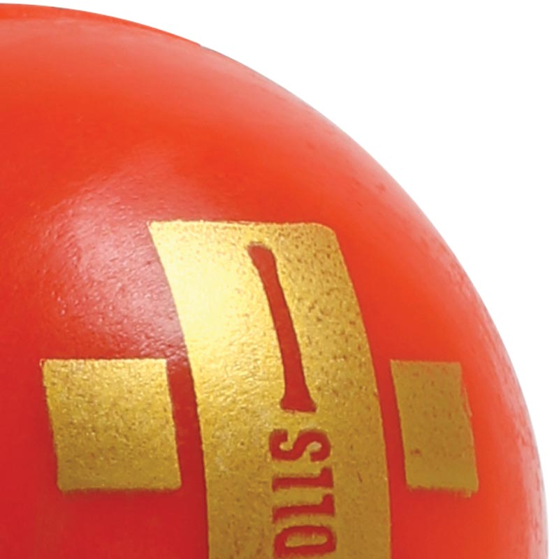 Gray nicolls indoor cricket ball for Indoor cricket net design
